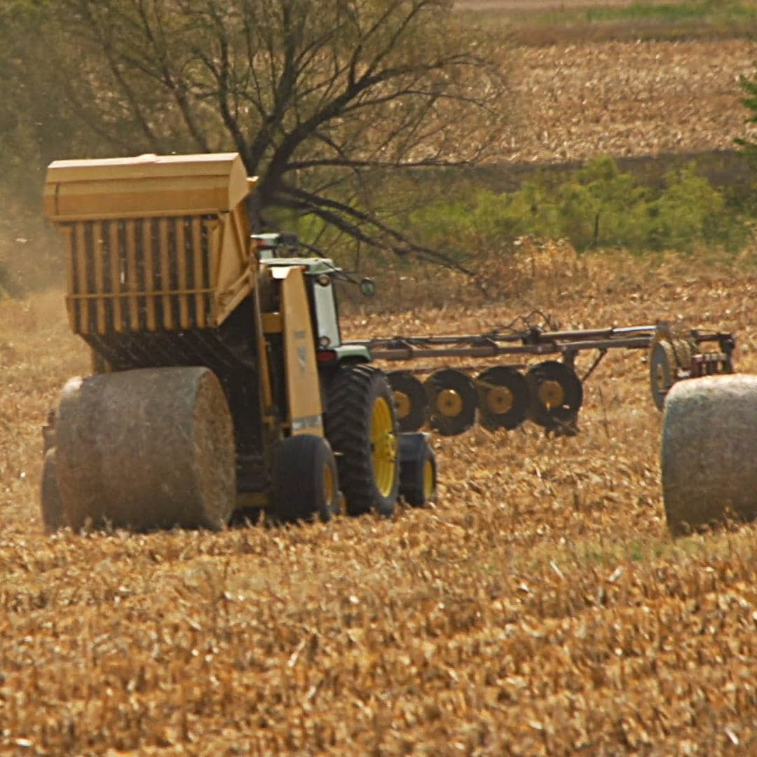 bale cornstalks after cut and chopped for bedding in cattle operation